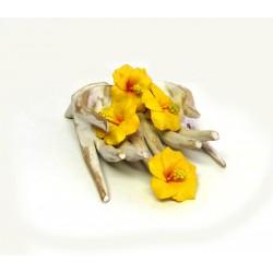 Fleur d'Hibiscus en mousse...